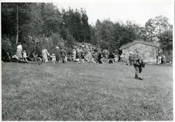 Ivar Aasen-stemnet 1950