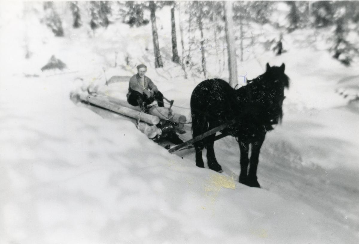 Magnar Dokken på tømmerkjøring, ca 1954.