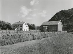 Prospektfotografi av gården Reitehaugen, vest for Veibust på