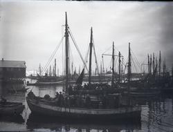 Fiskeskøyte Reg. R192
