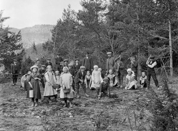 Skoleelever fra Heddal i Telemark lærer skogplanting.. Foto/Photo