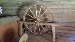 Drivhjul
