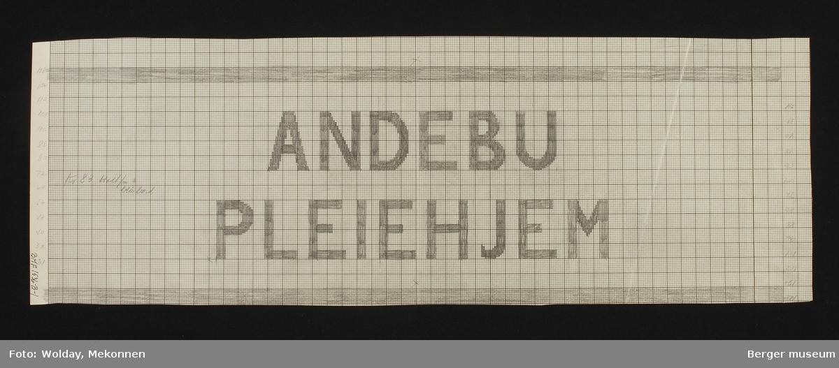 """""""ANDEBU PLEIEHJEM"""""""
