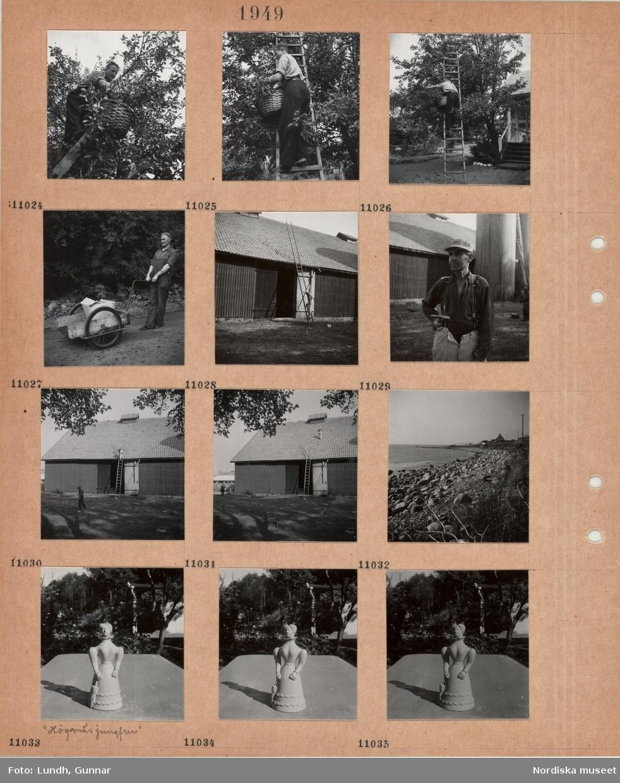 """Motiv: En man står på en stege och plockar frukt i en korg, man i arbetskläder drar en kärra på en väg, en man klättrar på en lång stege lutad mot ekonomibyggnad, man i arbetskläder och skärmmössa med reklam, verktyg i handen, en man går på ett tak, stenig strand, keramikfigur, kvinna i 1800-talsklänning med parasoll, """"Höganäsjungfrun""""."""