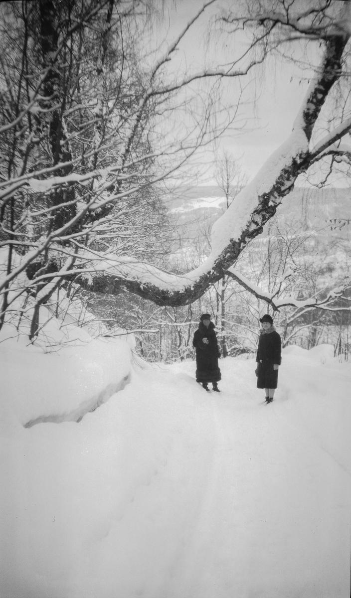 Vinter, Kvinner på tur.