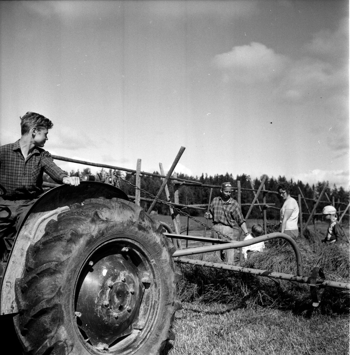 Hertsjö, Olle Hansson slåttar, 1 Juli 1965