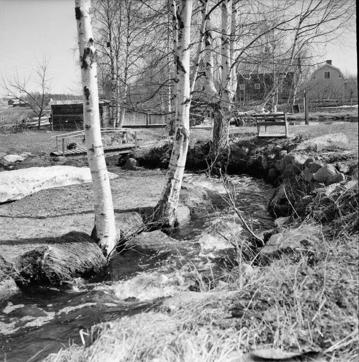 Lingbo, Avstjälpningsplats, 10 Maj 1966