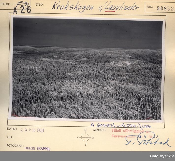 Krokskogen, Løvlia, Løvliseter / Lauvliseter (Flyfoto)