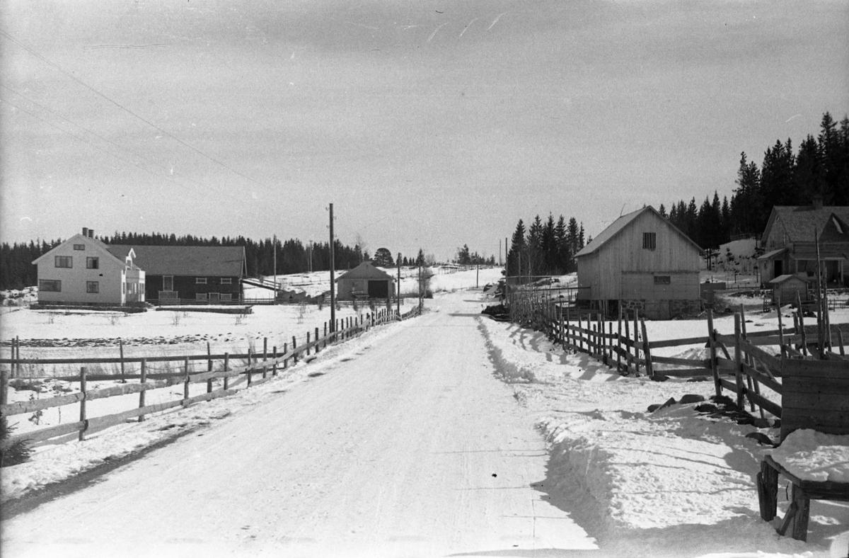 Vintermotiv fra Lensbygdavegen litt øst for Lindholm, ved avkjøringa til Årumsvegen. Til venstre Bjørgan (Kolbjørn Owren), til høyre Grande.