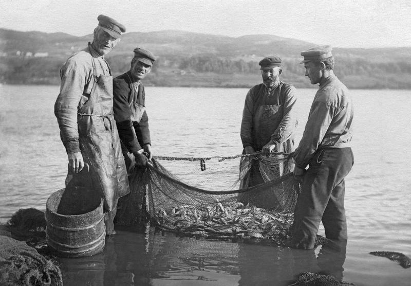 Lågåsildfiske ved Vingrom