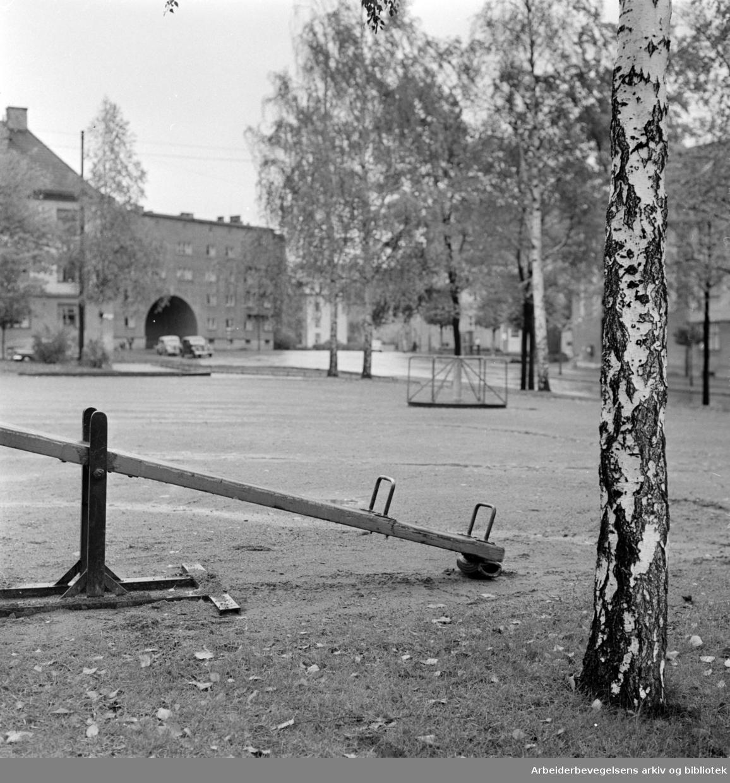 Torshovparken. Parti fra Torshovparken. Oktober 1960