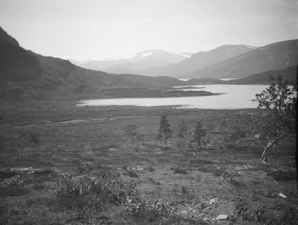 Parti fra Sjodalen - sett fra Grasvikje, rett under Svartberget. Vi ser Fluguvikje, Øvre Sjodalsvatn nærmest. Mot horisonten midt i bildet ser vi Høgdebråtet. I forkant av denne mot høyre: Knutshøe, Veslfjellet og Besstrondfjell.