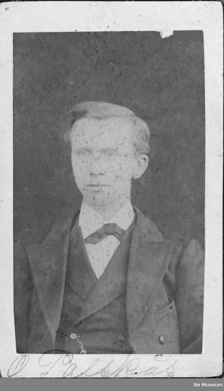 Portrett av O. Pålskås