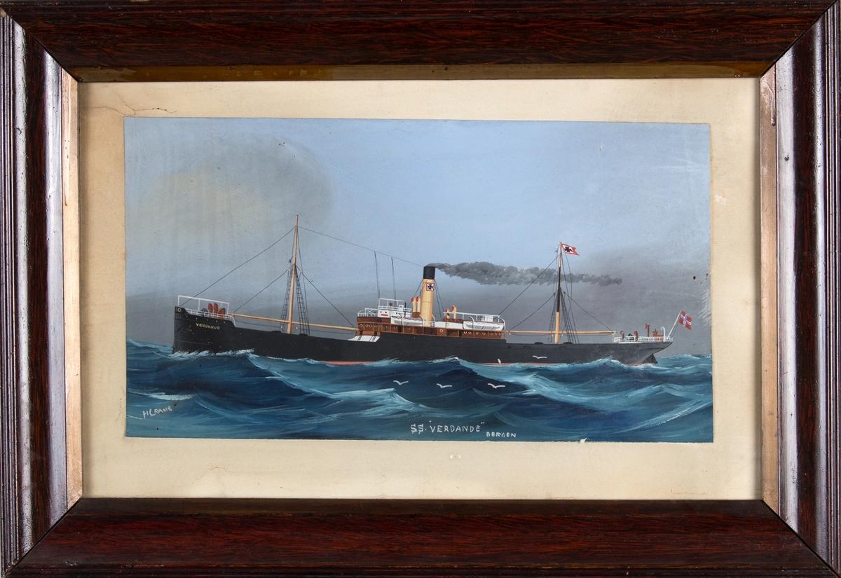Skipsportrett av DS VERDANDE på åpent hav. Fire måker i forgrunnen av skipet. Norsk flagg i akter.