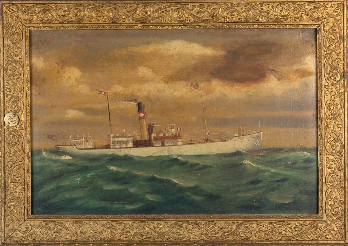 Skipsportrett av DS BEATRICE under fart i åpen sjø. På maleriet fører skipet United Fruits Co. skorsteinsmerke og vimpel samt Det amerikanske flagget. Norsk flagg akter.