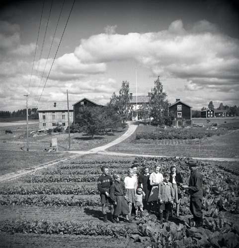 Undervisning ute bland odlingarna. Unga Odlare 1948 - 1949.