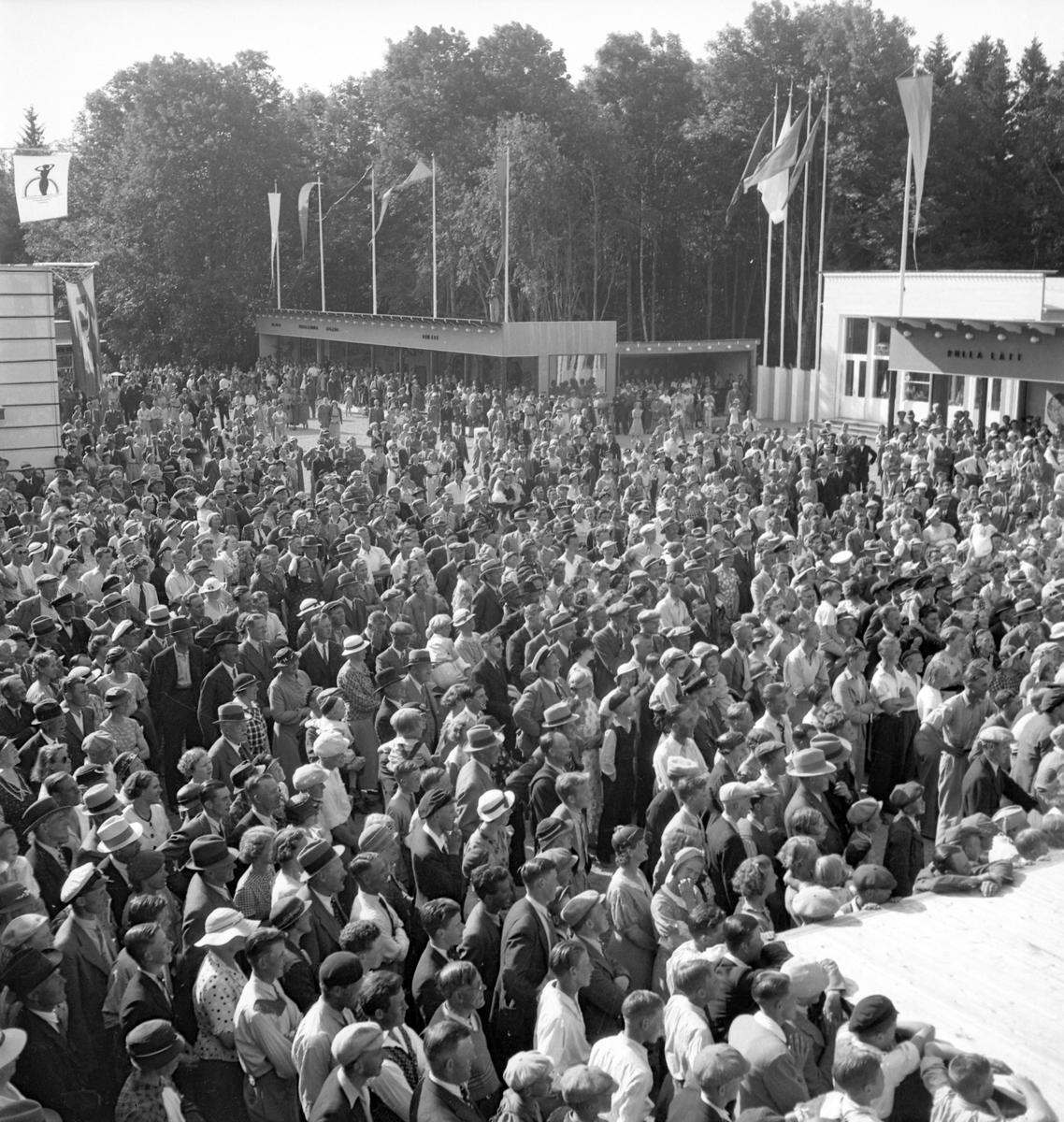 Furuviksparken invigdes pingstdagen 1936.  Nöjesfältet, badplatsen Sandvik och djurparken gjordes iordning.  Mycket folk vid scenen