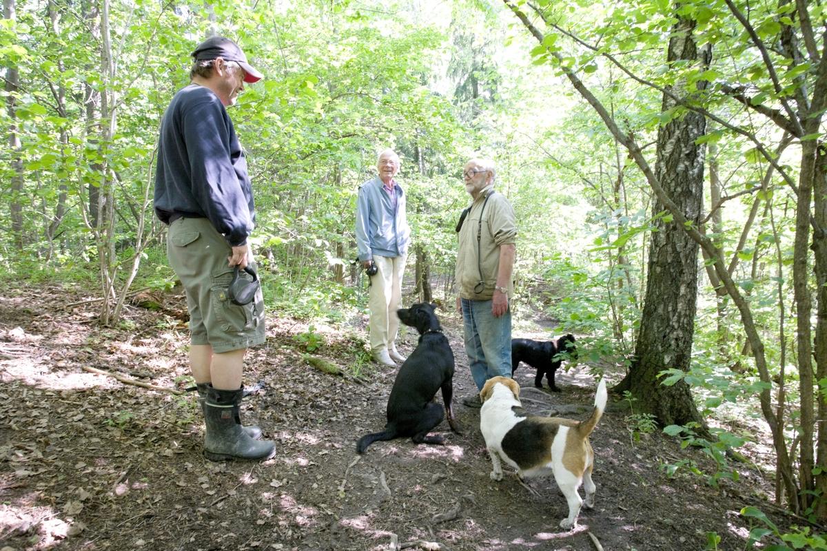 Hunden Emmy på tur treffer på andre hunder og hundeeiere.