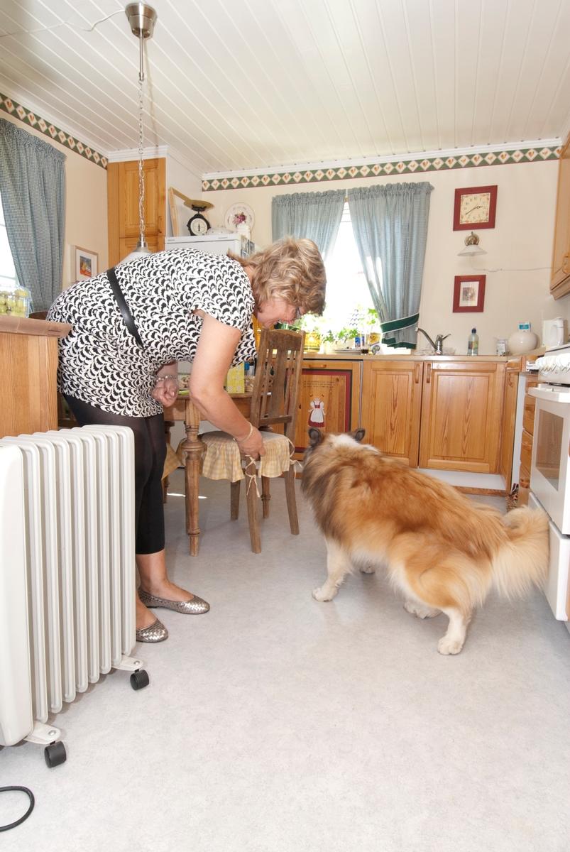 Hunden Romeo får mat på kjøkkenet av sin eier