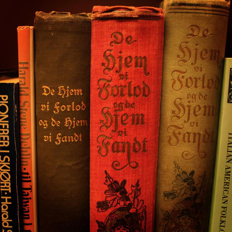 bibliotek2.jpg. Foto/Photo