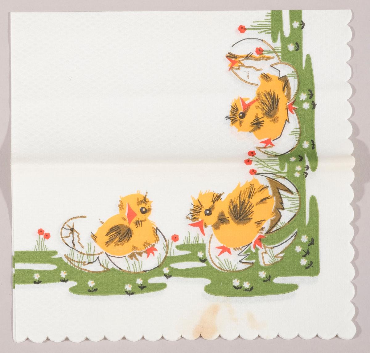 Tre påskekyllinger sitter i skallet til egg, hvorfra de er blitt klekket ut på en grønn eng med hvite og røde blomster.