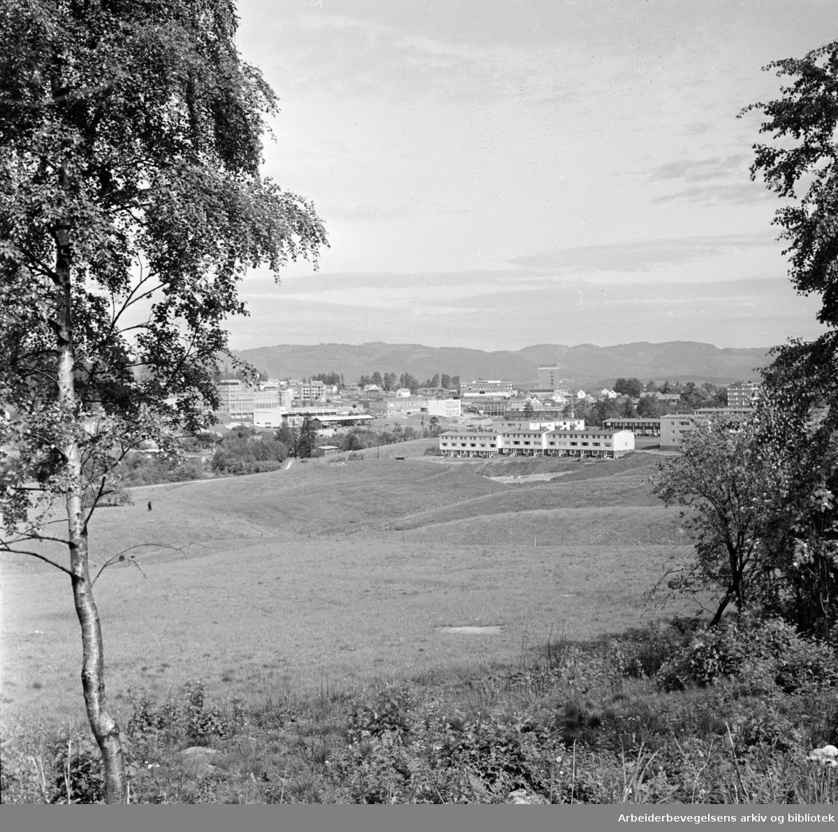 """Nydalen: Bebyggelsen ved Brekke og Engebråten sett fra """"utsikten"""" i Nydalen. Juni 1962"""