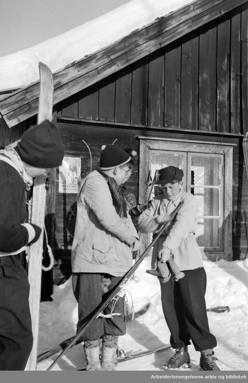 Nordmarka: Lillomarka, Sinober turisthytte og serveringssted. Februar 1953