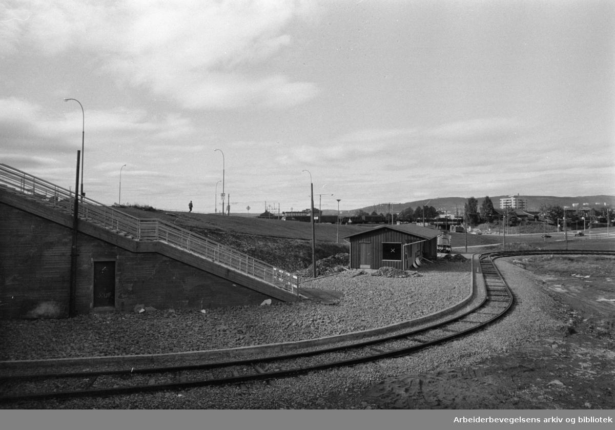Muselunden. Sinsentrikken til Muselunden. Oktober 1969