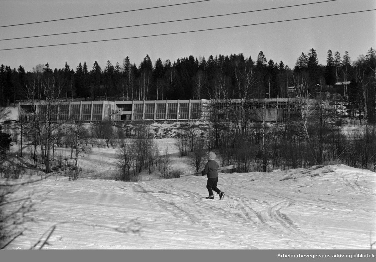 Idrettshøyskolen på Sogn. Februar 1965