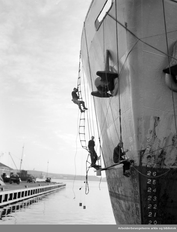 Havna. Maling av skip. Desember 1951