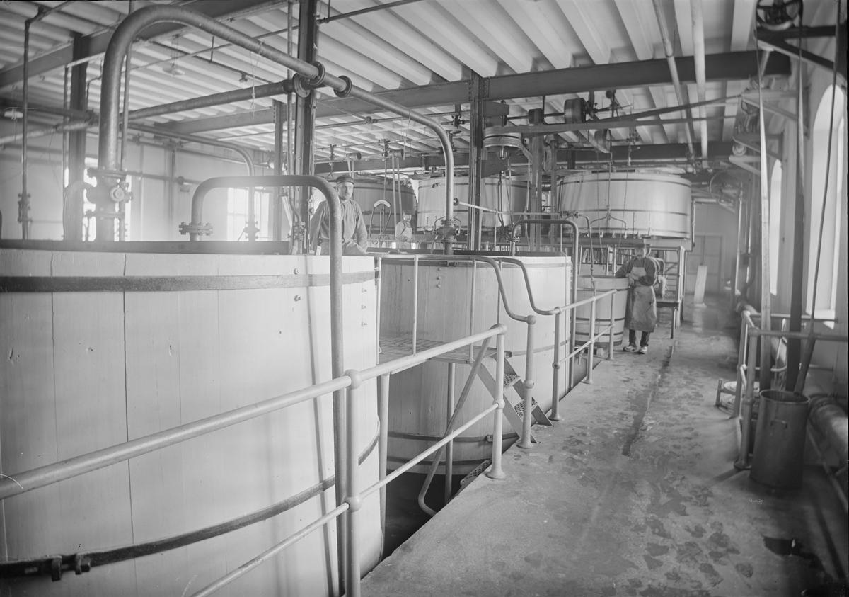 Jäskar i jästfabriken, Upsala Ångqvarns AB, Östra Ågatan, Uppsala okring 1913