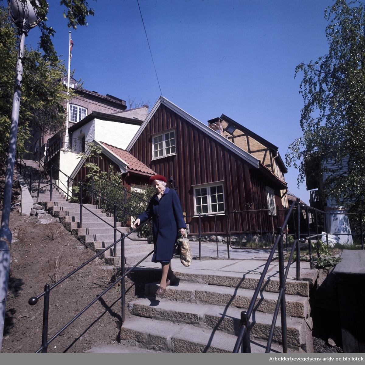 Damstredet: Trappa til Damstredet. Juni 1976