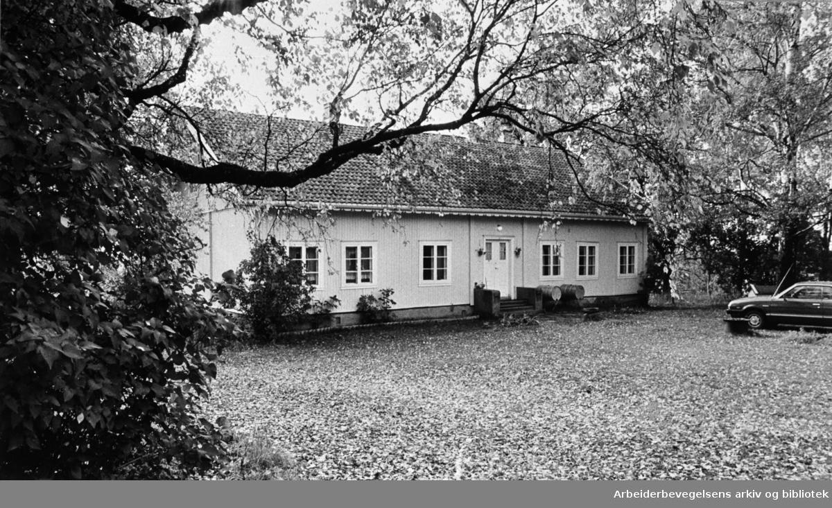 Årvoll gård. 1981