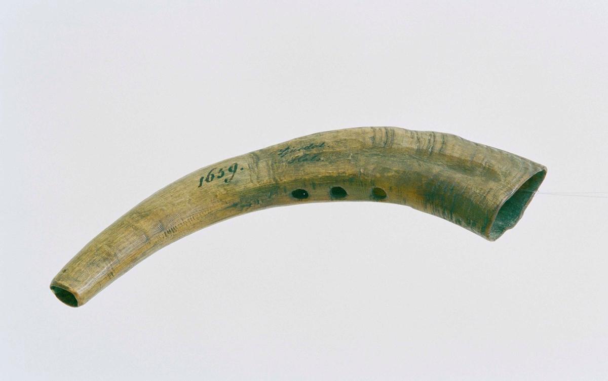 """Vallhorn av gethorn.  Tre borrade hål på ovansidan, ett på sidan vid större öppningen. Tidigare lagad spricka på undersidan vid mindre öppningen (blåshålet). Enl. huvudliggare """"urgammal""""."""
