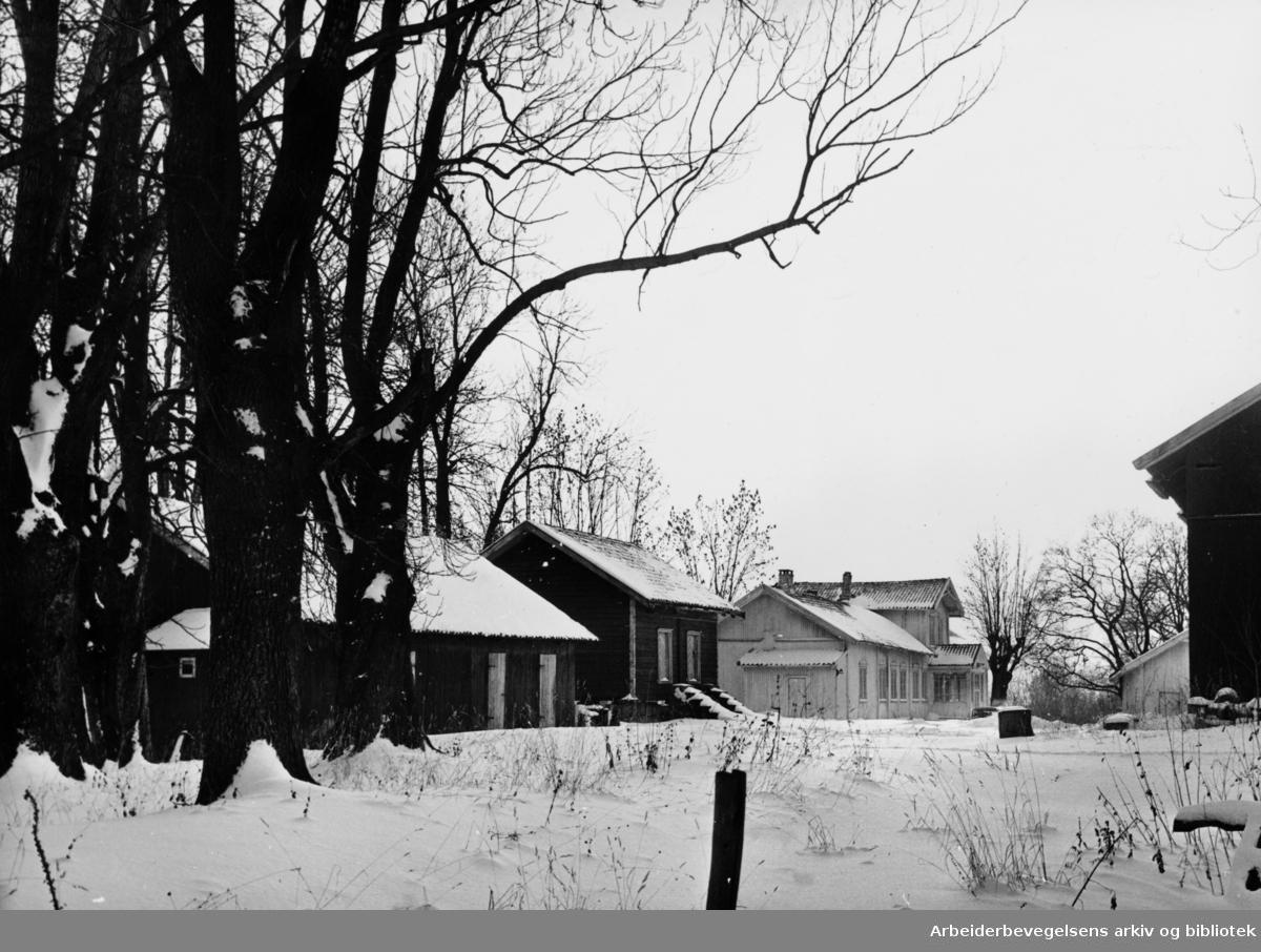 Berg gård. Sentralinstituttet for celebral parese. Januar 1964
