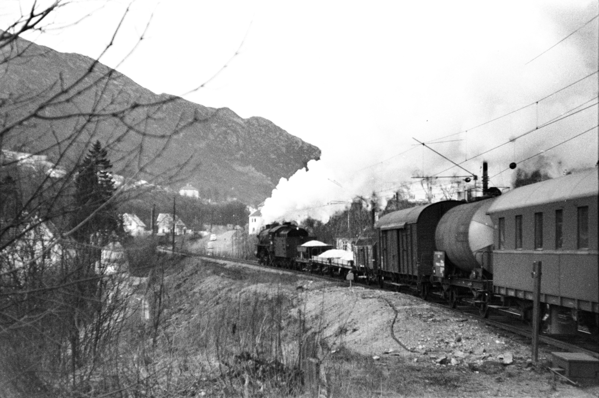 Damplokomotiv type 31b nr. 401 med godstog fra Oslo til Bergen, tog 5515. ved Fjøsanger stasjon.