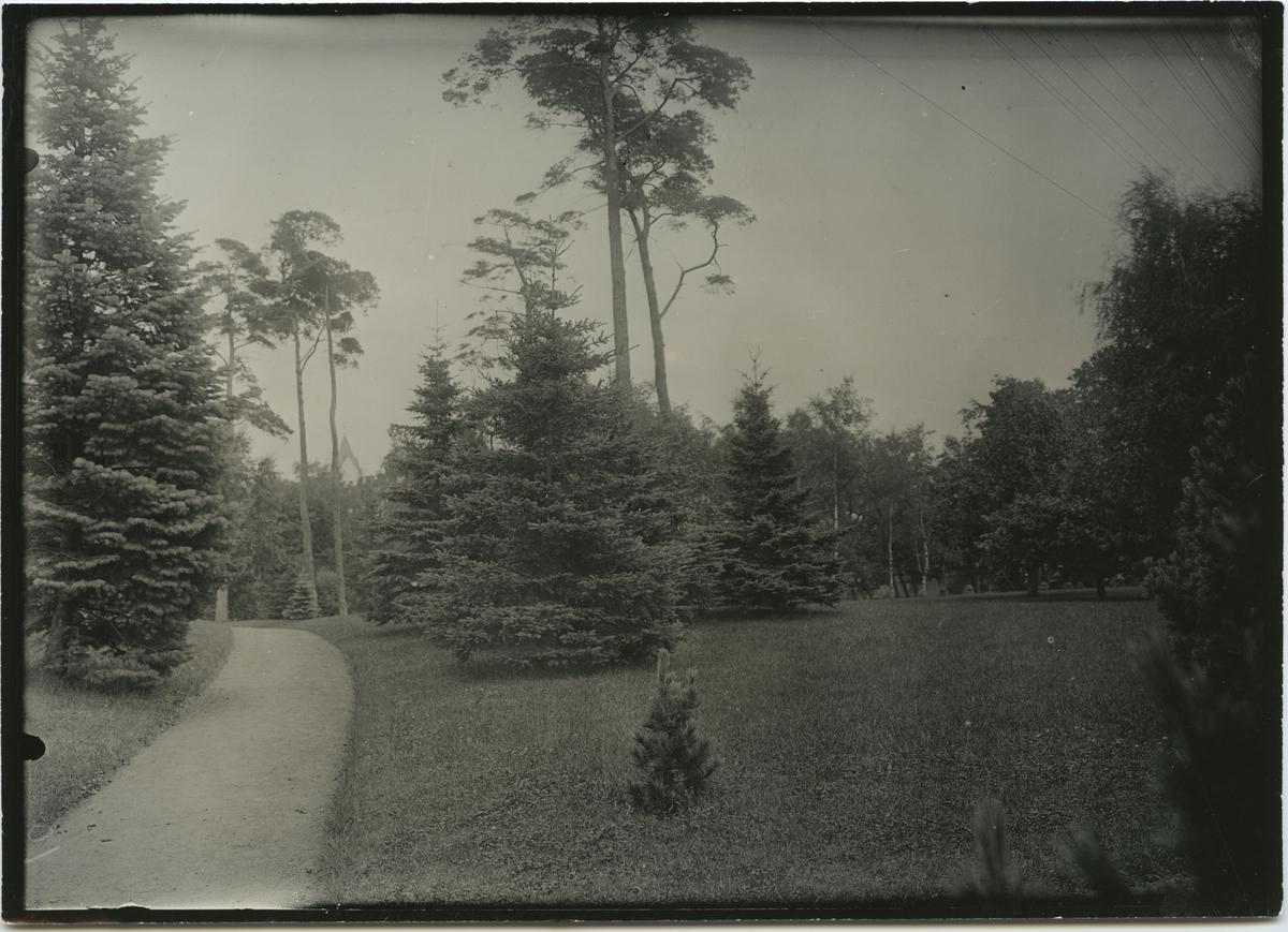 Park i Ängelholm.