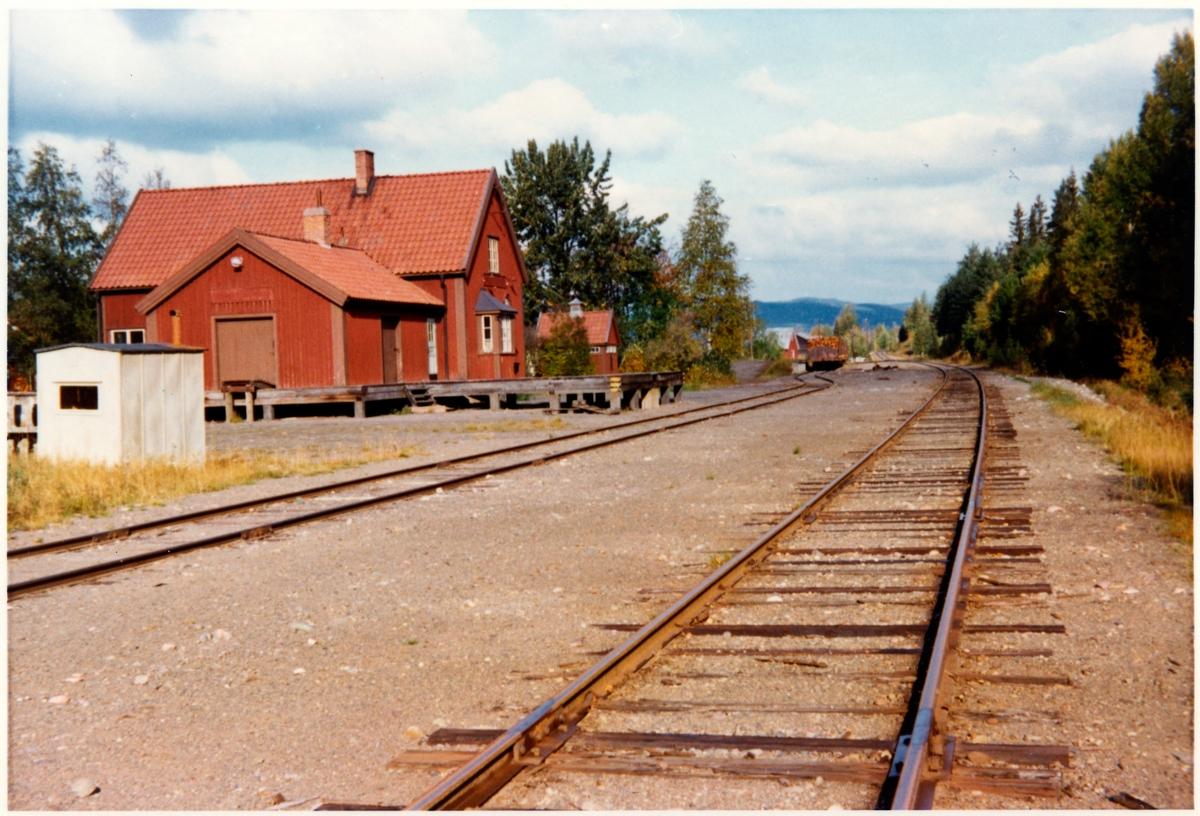 Torgåsmon station.
