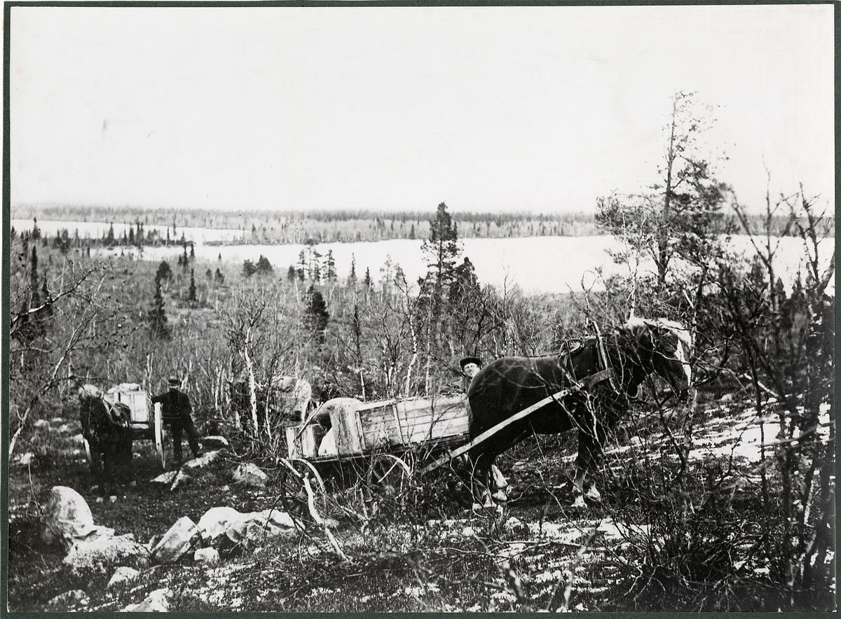 Statsbanebyggnaden Gällivare-Porjus. Transport av materiel vid Killanjaure.