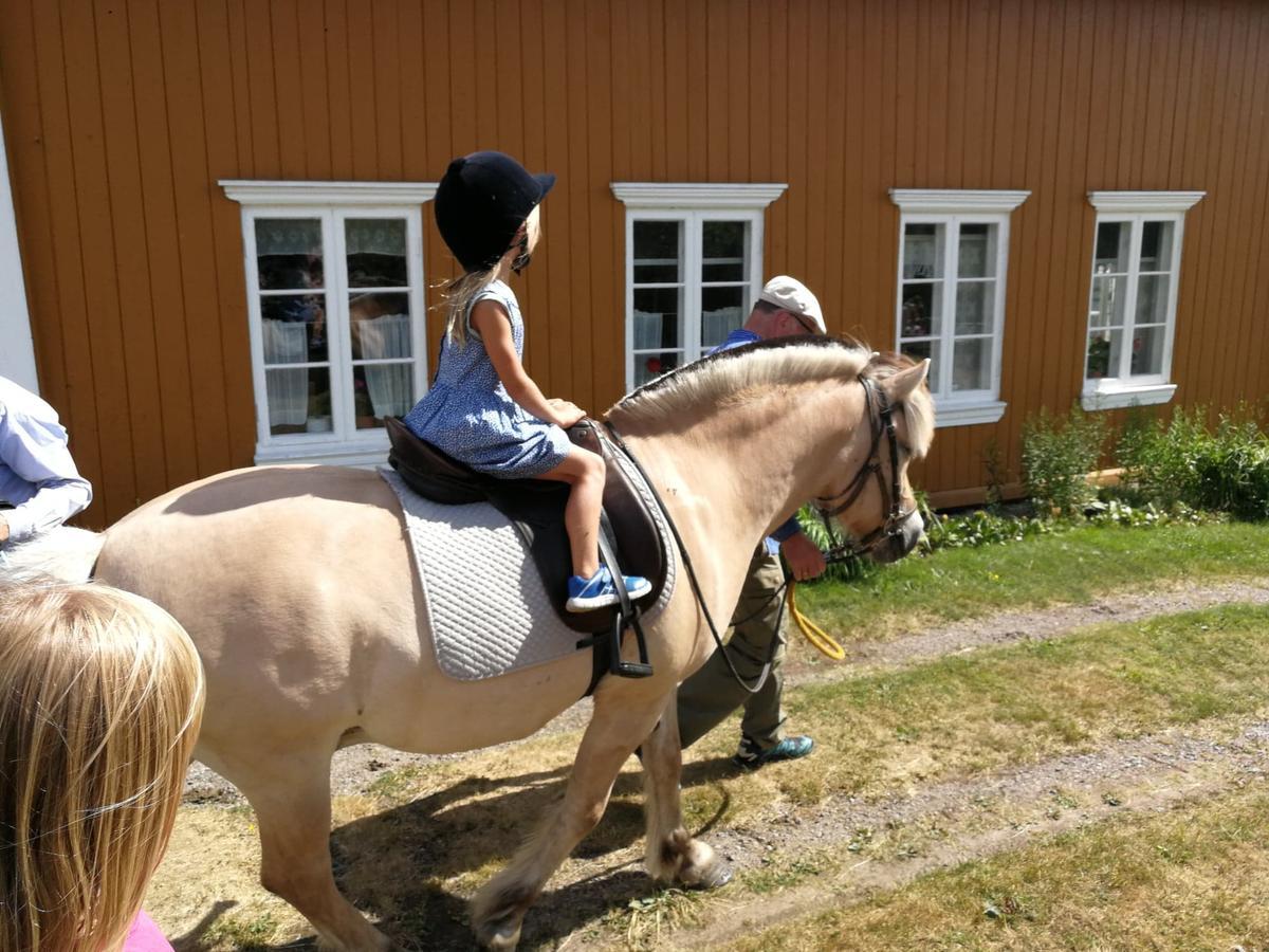 Middelalder hest