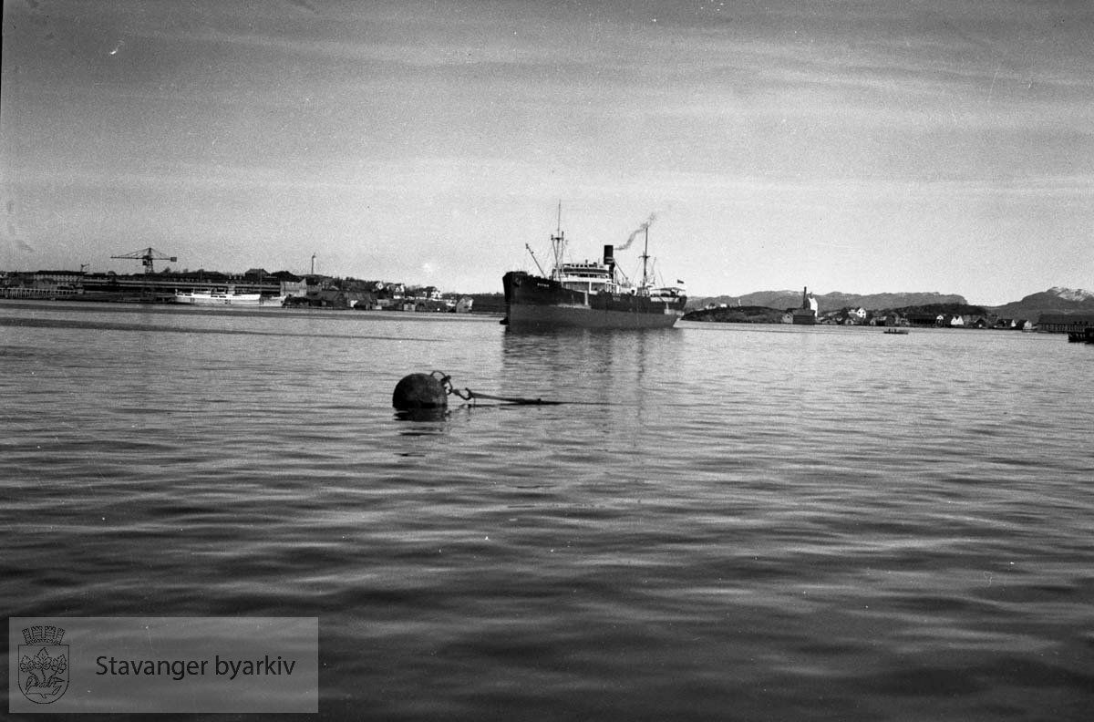Saphir ankret op i Byfjorden