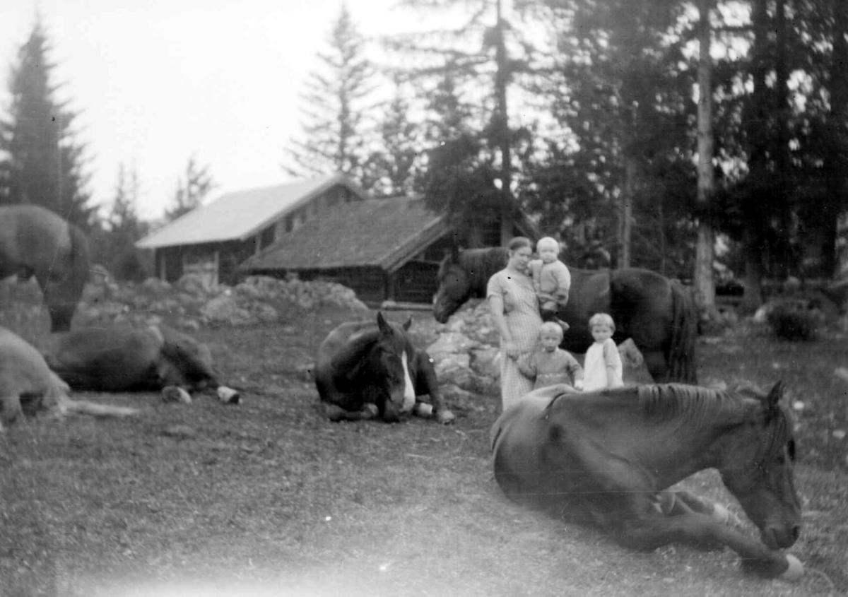 Kvinne med tre barn sammen med flere hester.