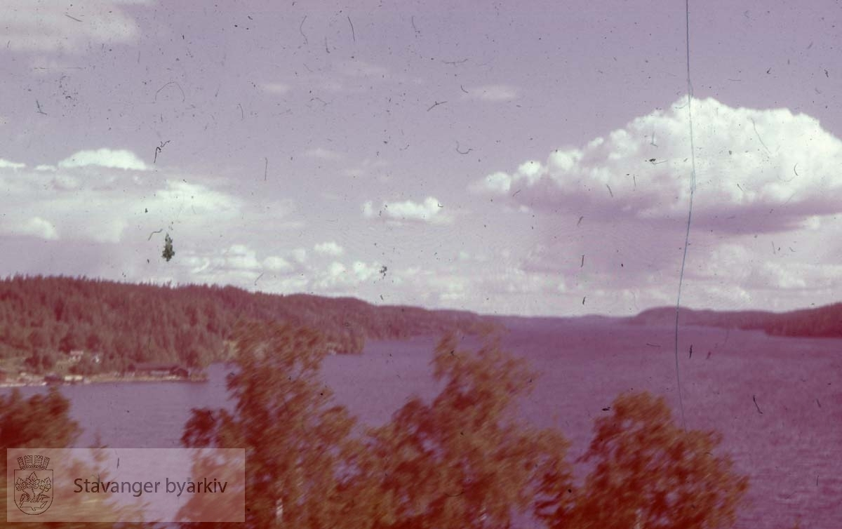 Utsikt over fjord