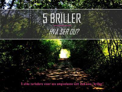 Facebook_header_5_briller.jpg