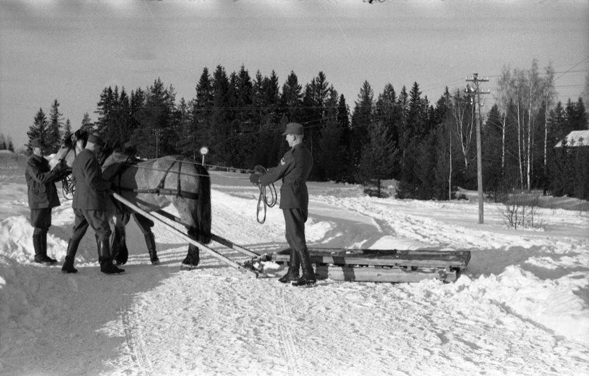 Seks bilder fra Hærens Hesteskole på Starum ca. årsskiftet 1957/1958. NOen av leirens befal viser hest og en slags slede. Personene er ikke identifisert.