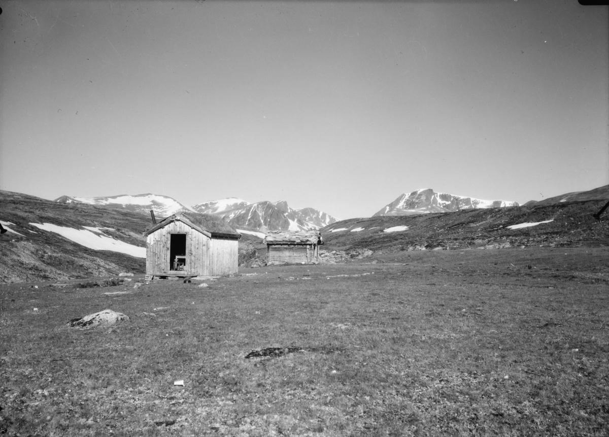 Dovrefjell mot Lesja med Svånåtindan og Bruri bak i bilde