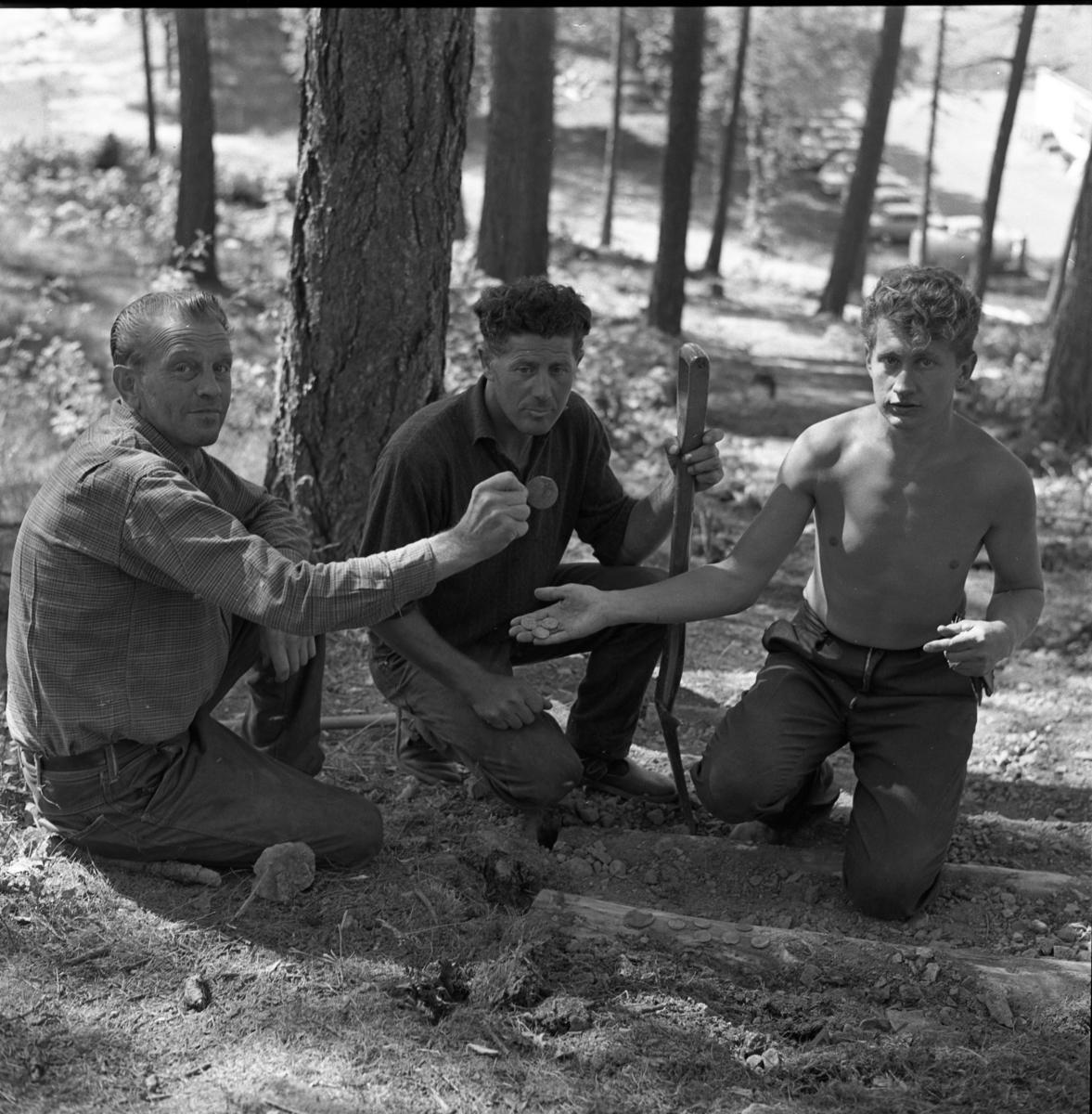 Tre män har funnit gamla mynt strax norr om ålderdomshemmet. Två av dem håller i mynt, den tredje håller i en spade.