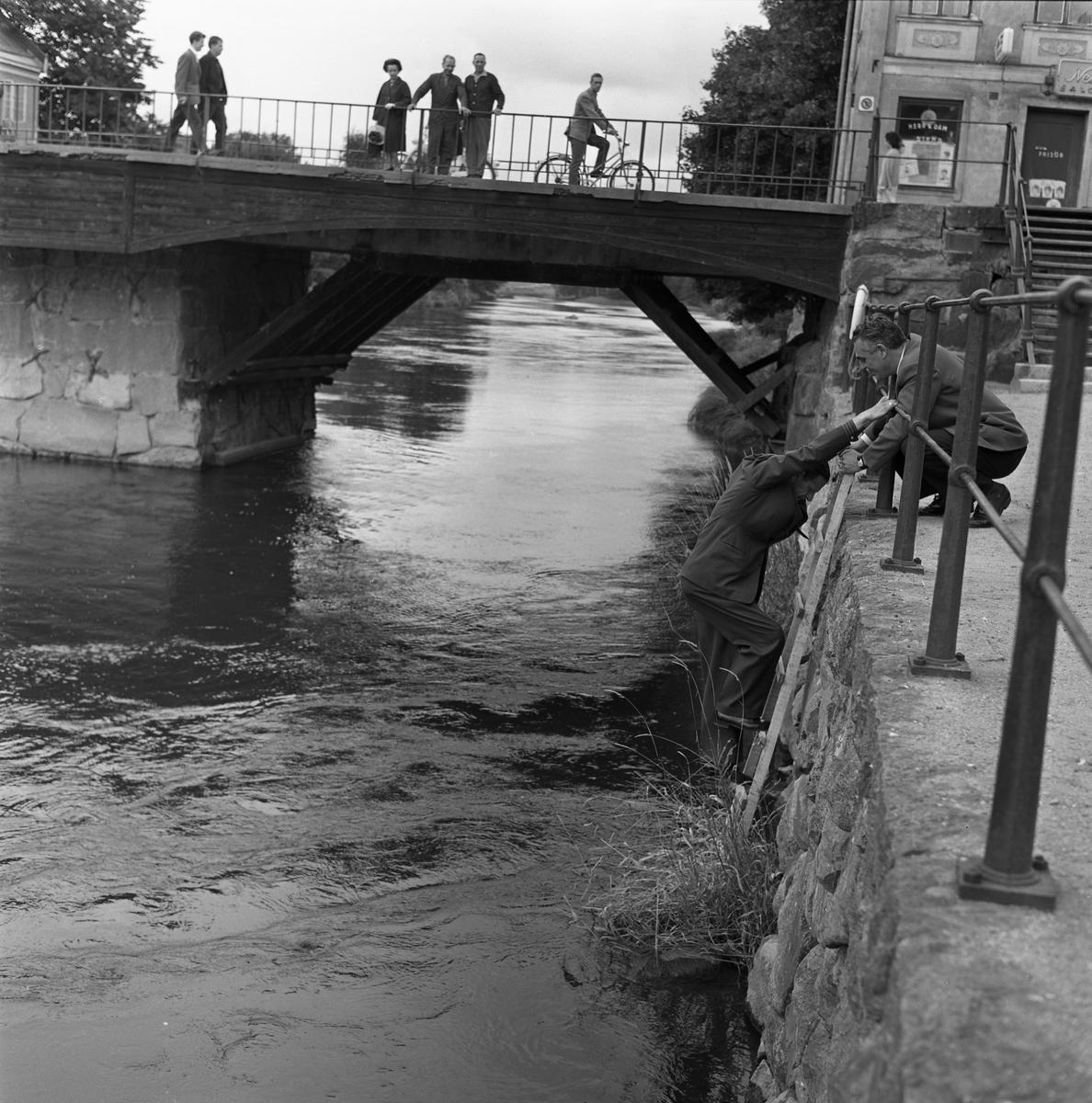 En katt har ramlat i ån! Polisman Ivan Pettersson klättrar ner på stegen och polisman Ragnar Hedin håller i. Människor har stannat på Kapellbron för att följa händelseutvecklingen.