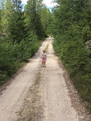Sætervegen, Skålbergsætra. Foto/Photo