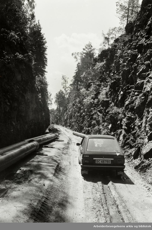 Lusetjerndalen. Mai 1980